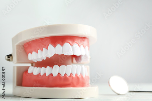 Fotografía  Teeth model with dental tool on grey background