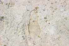 Footprints In The Sand. Traces...
