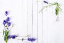 Fresh Lavender Flowers On Whit...