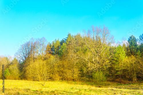 Papiers peints Turquoise Spring landscape in Europe