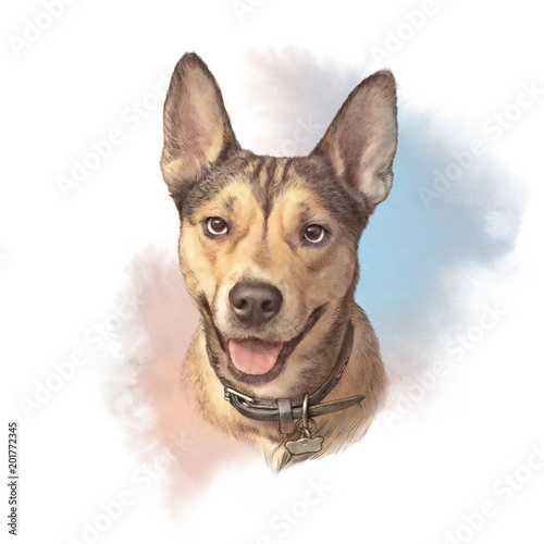 d7ca341bc6b3b Head portrait of a Dog. Cute puppy on the watercolor background ...