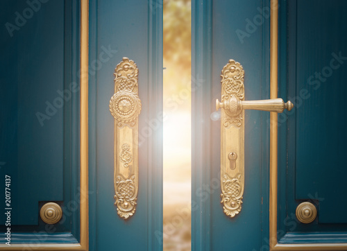 Foto op Plexiglas Historisch geb. antique ornate gold door handle