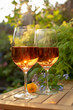 Two cold rose wine glasses served on outdoor terrace in garden with flowers in sunny day