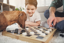 Low Angle Of Interested Dachshund Puppy Sniffing Checkers On Board. Happy Boy Is Looking At Animal With Joy And Smiling. Man Is Pointing Finger On White Figurine