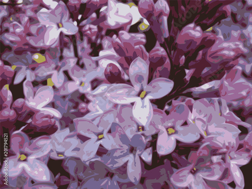 Foto op Canvas Hydrangea Lilac flowers combined in inflorescence.