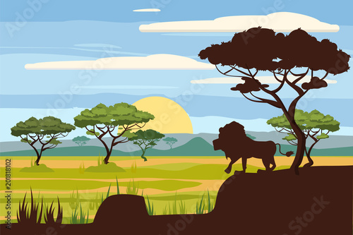 In de dag Pool African landscape, lion, savannah, sunset, vector, illustration, cartoon style, isolated