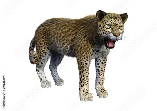 Poster Leopard 3D Rendering Big Cat Leopard on White