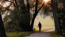 Man And Dog, Young Man With Hi...