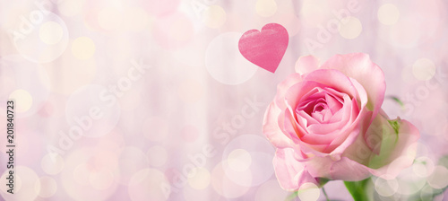 Keuken foto achterwand Roses Romantic rose flower background with heart