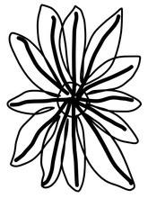 Outline Drawing Of A Flower