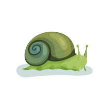 Green Snail Gastropod Mollusk With Green Shell Vector Illustration On A White Background
