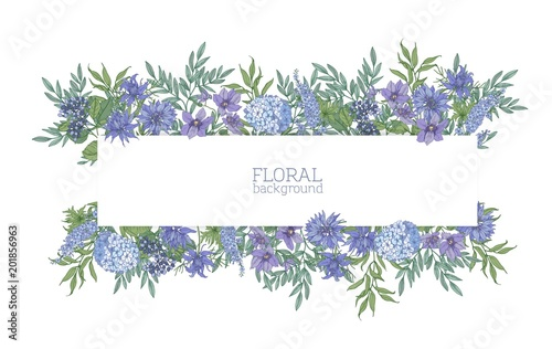Stampa su Tela Horizontal background or banner surrounded by gorgeous blue wild blooming flowers and summer meadow flowering plants
