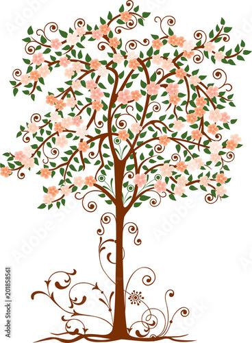 Dekoracyjne kwitnące drzewa