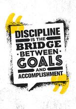 Discipline Is The Bridge Betwe...