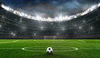 Leinwandbild Motiv fußballfeld mit fussballtor