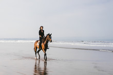 Woman Riding Horse On Sandy Be...