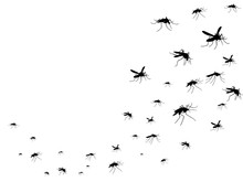 Flying Mosquitoes Black Silhou...