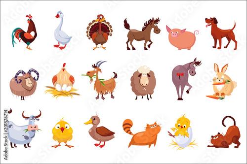 Set of farm animals Fototapete