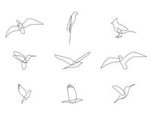 One Line Birds Set. Vector Ill...