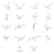 One Line Birds Set. Vector Illustration