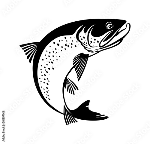 image trout  fish Canvas Print