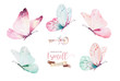 Leinwanddruck Bild - Watercolor colorful butterflies, isolated on white background. blue, yellow, pink and red butterfly illustration.