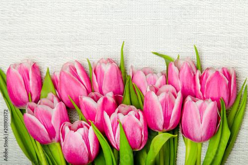Foto op Plexiglas Tulp Pink tulip bouquet on light background, copy space