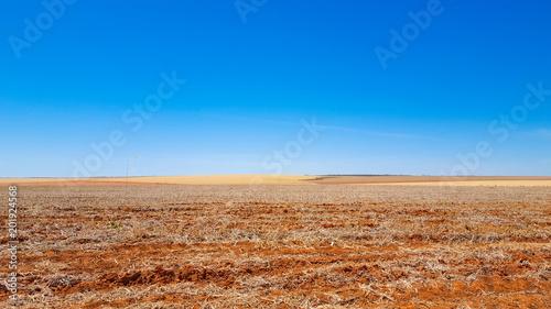 Foto op Aluminium Oranje eclat Rural
