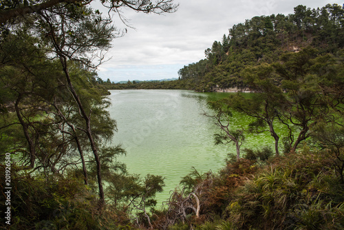 A green lake at the Waiotapu Geothermal Wonderland in New Zealand near Rotorua.
