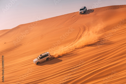 Desert dune bashing