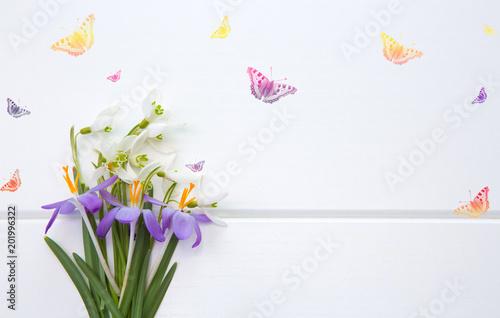 Plakat Wiosny śnieżyczka i purpurowy krokus karty jest dzień matki.