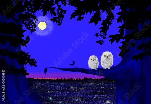 夜が明ける前に - Adobe Stock ...