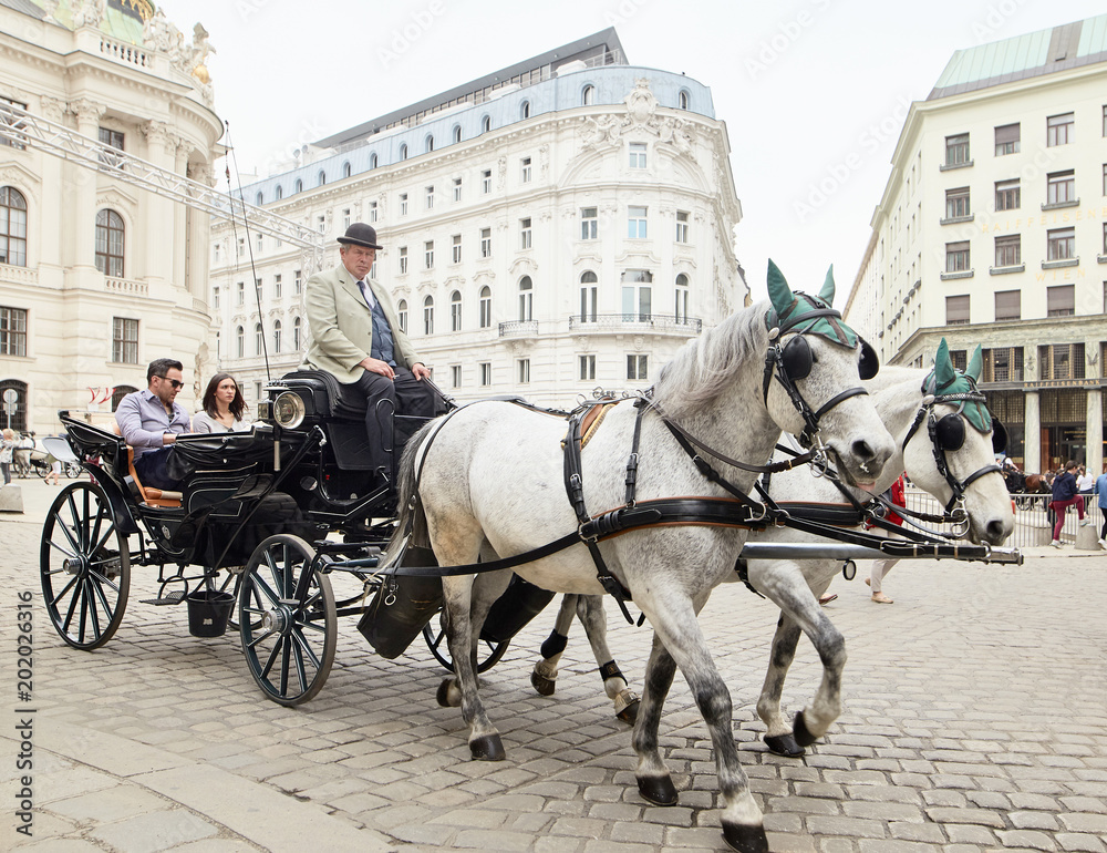 Photo  Vienna, Austria - 15 April 2018: a cab driver in a carriage with two horses drives tourists around the city