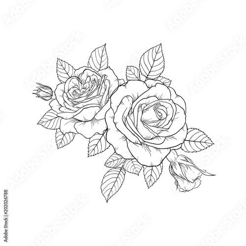 piękny czarno-biały bukiet róży i liści. Układ kwiatowy na białym tle. Zaprojektuj kartkę z życzeniami i zaproszenie na ślub, urodziny, Walentynki, dzień matki, wakacje
