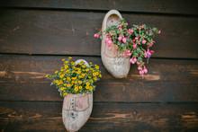 Wooden Shoes. Netherlands