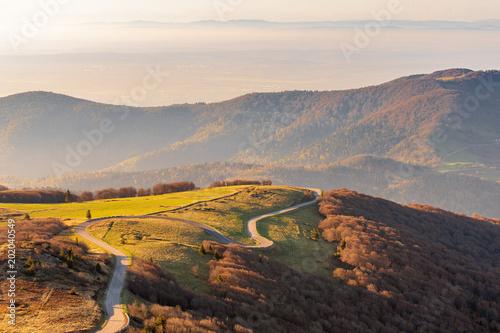 Fényképezés French landscape - Vosges