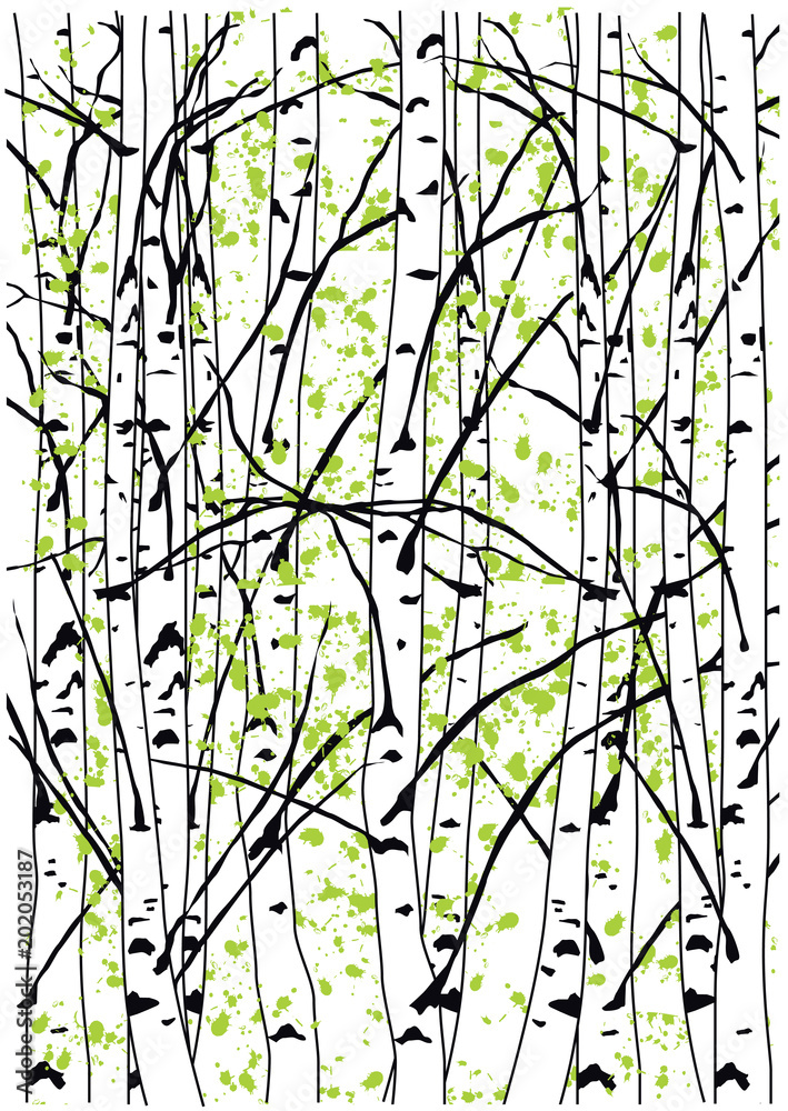 Beautiful sping birch tree forest. Simple vector illustration of spring birch trees.