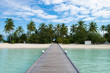 Beautiful tropical Maldives island with beach , sea , and coconut palm tree on blue sky for nature holiday vacation background concept.