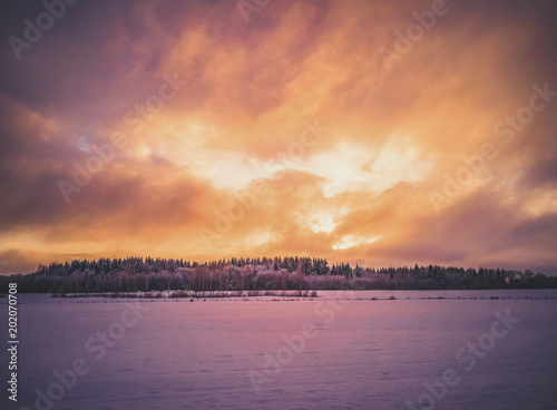 Foto op Plexiglas Crimson Calm Evening Photo with the Field and Forest with the Sunset in the Background - vintage look edit