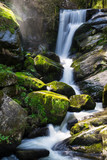 Germany, German waterfalls in triberg with moss covered stones and mystic atmosphere