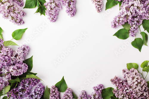 Foto op Plexiglas Lilac Frame of spring lilac flowers on white background. Flat lay, top view.