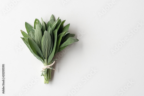 Close up of small bunch of sage tied with string on white background with copy space