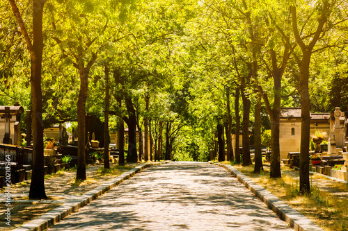 Canvas Prints Cemetery The Pere Lachaise Cemetery in Paris