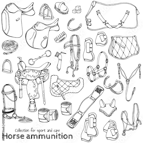 Photo Group of vector illustrations on the theme horse ammunition; set of isolated objects for equestrian sport and care