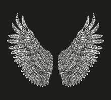 Bird Wings Hand Drawn. Vector Illustration On Black Background