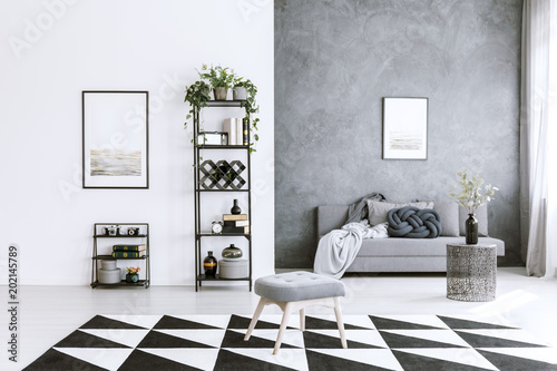 Photo Grey living room