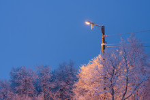 Illuminated Street Light