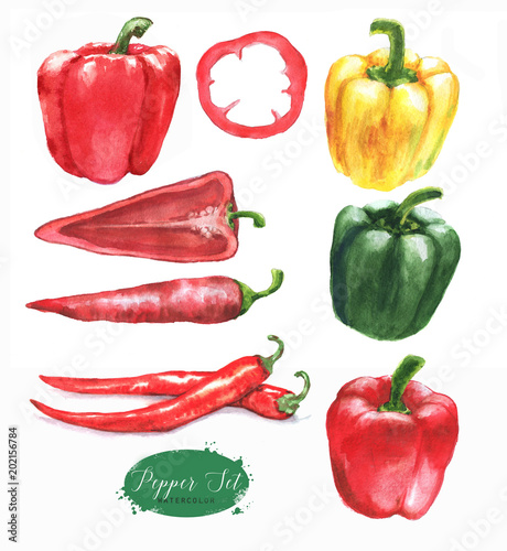 Hand-drawn watercolor illustration of the different peppers - chili pepper and sweet red, green and yellow pepper. Drawing isolated on the white background. Fototapete