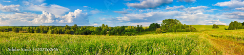 Poster Campagne Rural landscape. Panorama