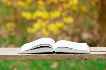 Otwarta książka na naturalnym tle